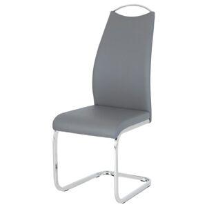 Sconto Jídelní židle ANITA šedá