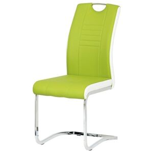 Sconto Jídelní židle ASHLEY zeleno-bílá