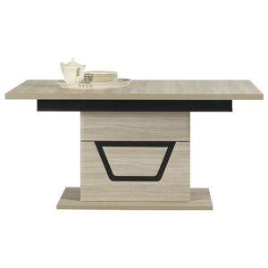 Sconto Jídelní stůl BONN TS9 jilm matný/černá