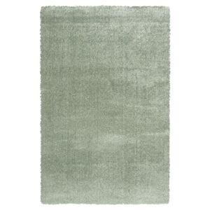 Sconto Koberec DOLCE VITA olivová, 160x230 cm