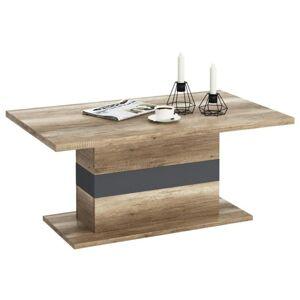 Sconto Konferenční stolek MADRAS dub canyon/šedá