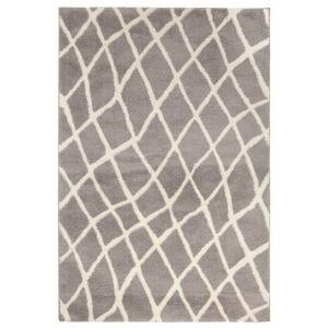 Sconto Koberec NANO SHAG 4 šedá, 100x150 cm